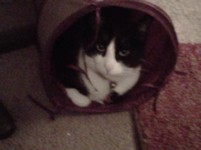 He's in his tunnel