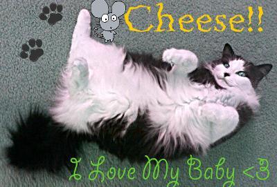 Cheese :o)