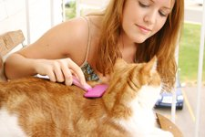 Woman Grooming Cat